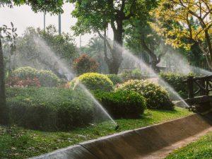 sprinkler-system-installation
